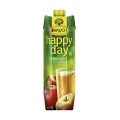 SUC RAUCH HAPPY DAY DE MERE 1L