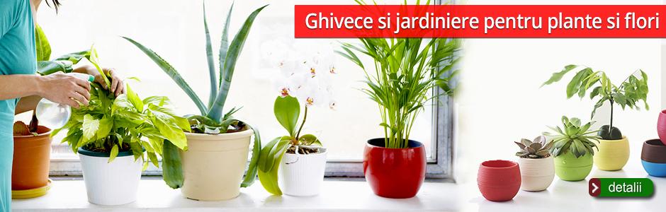 ghivece_jardiniere_flori_plante_bradu.ro