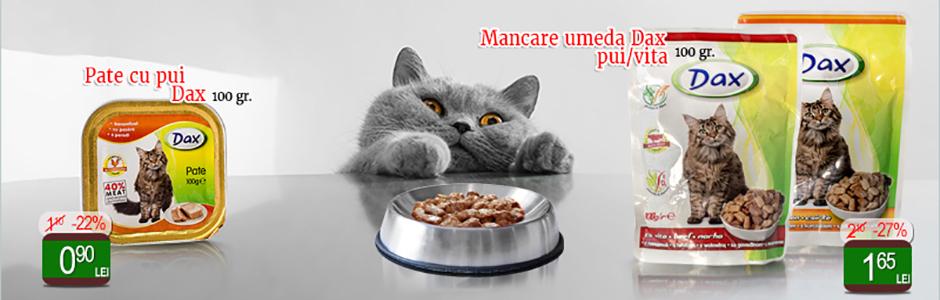 mancare_umeda_pisici_dax_bradu.ro